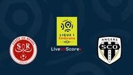 Nhận định tỷ lệ cược kèo bóng đá tài xỉu trận Reims vs Angers