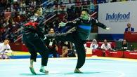 Đoàn thể thao Việt Nam đã có một kỳ ASIAD thành công!