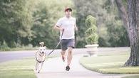 Độc đáo nghề chạy bộ thuê cùng... chó