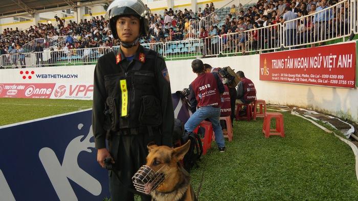 Cận cảnh 4 chú chó nghiệp vụ đảm bảo an toàn cho trận đấu của Hoàng Anh Gia Lai